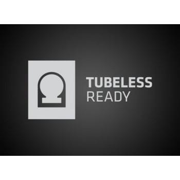 Tubeless Ready